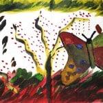 #41 - Knobthorn Acacia