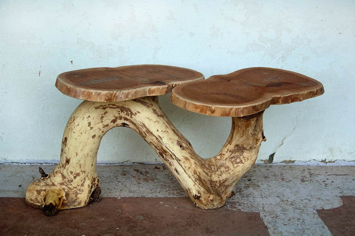 Neelam Varma, Found & Made Series - Fallen Tree Table (After), 2016, Fallen and found Tree and Tree branches, 30.48 x 60.96 x 45.72cm, photo: Kay Hassall Tiwari, made in Bandhavgarh Tiger Reserve, India