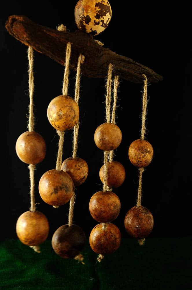 Neelam Varma, Found & Made Series - Wood Apple Dangler (After), 2016, Fallen and found Wood Apples and Tree bark piece, Local Rope, 130.48 x 60.96cm, photo: Kay Hassall Tiwari, made in Bandhavgarh Tiger Reserve, India