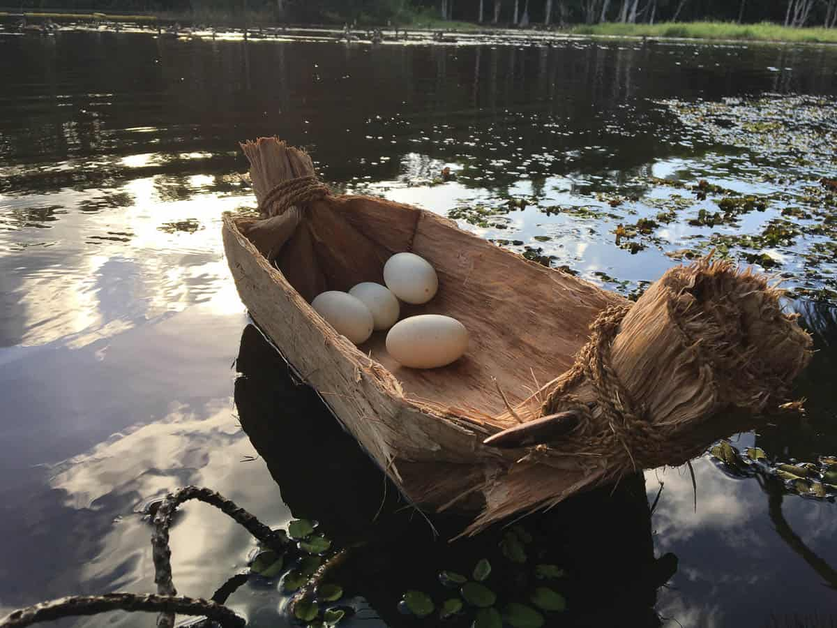 Shaun Edwards, Paperbark Coolamon (After), Kunthérr - Paperbark, Boxwood, Coconut husk string, Freshwater Crocodile Eggs, 25.4 x 45.72 x 15.24cm, photo: Shaun Edwards, made in Cairns, Australia