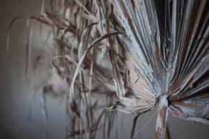 Marisa Georgiou, Tropical Concrete Forest (Before 1), Fallen Palm Fronds, photo: Fiarrah Walsh