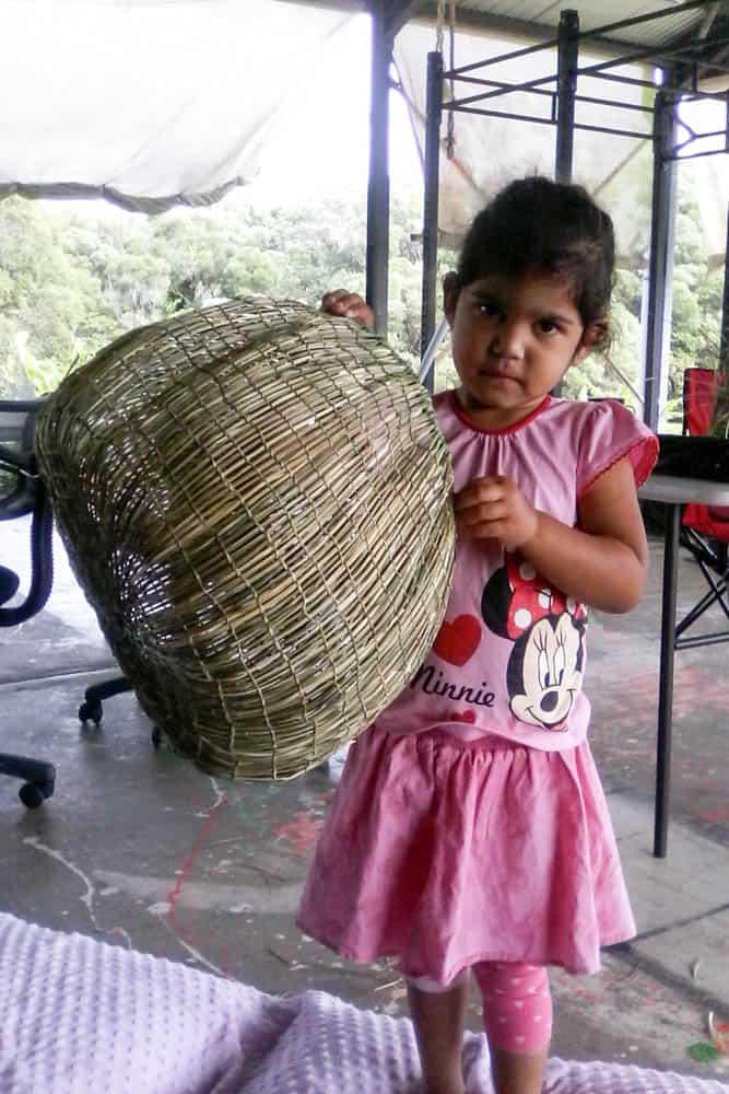 Basket by Sheila Brim from Kuranda