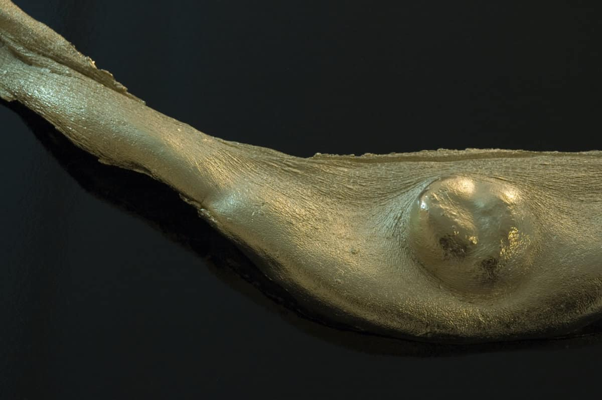Yvette King, Trophy, 2009, (detail) cast bronze, 24 crt gold, 88 x 40 cm, Courtesy of the artist