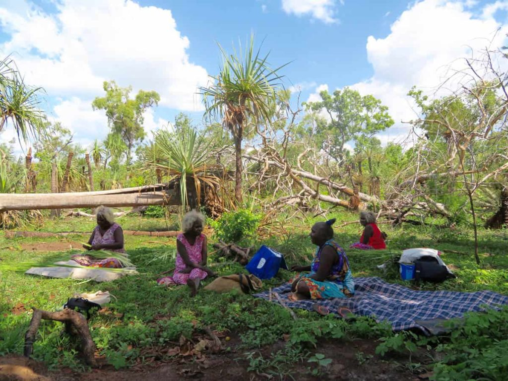 Collecting Pandanusnear Ramingining. July 2016. Left to right: Mary Rrikili, Betty Matjarra, Lynette Birriran, Julie Djulibing. Photo: Geraldine Kelly