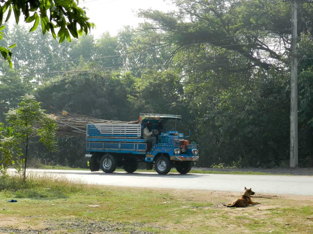 Eucalyptus Firewood delivery in a Thai made Farm Truck called a Rot Iten