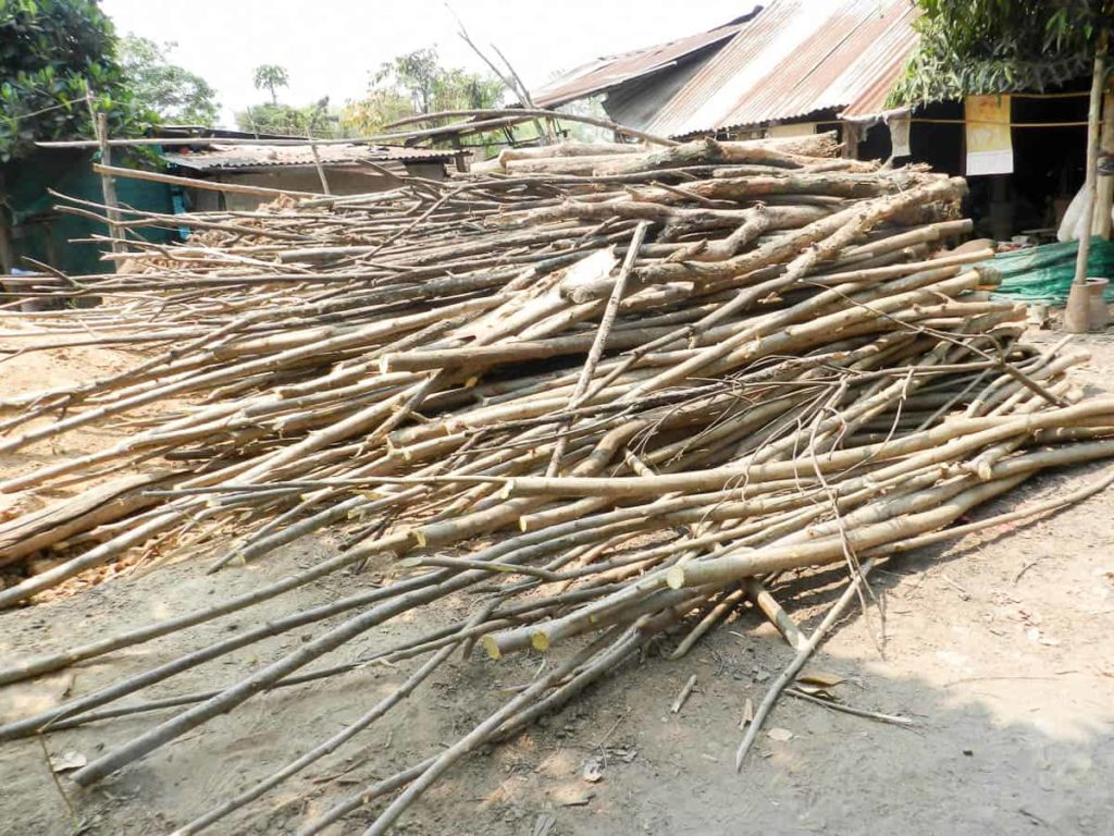 Eucalyptus firewood. The heavier parts of the wood are used for paper pulp.
