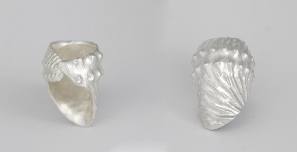 Marisa Molin, Nautilus, sterling silver, (ring) , photo: Mel De Ruyter