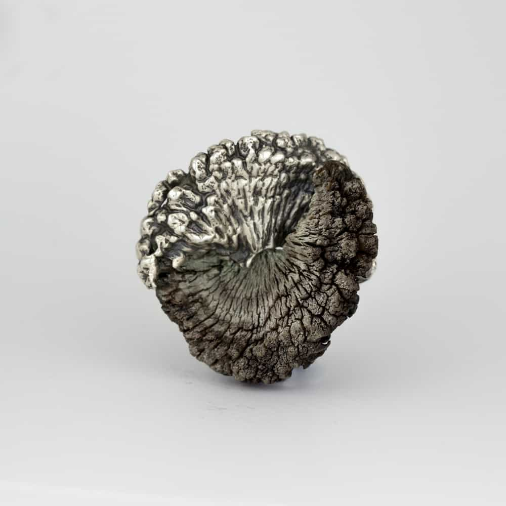 Marisa Molin, Kelp Track Wandering, sterling silver, kelp, stainless steel (brooch), Photo: Mel De Ruyter