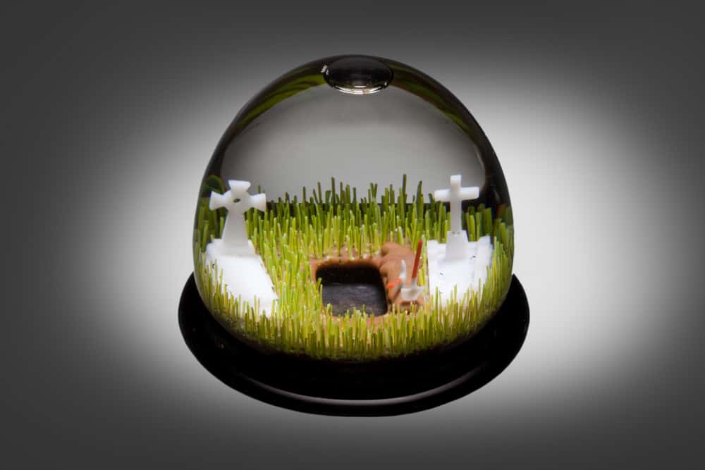 Ian Mowbray, Oh! I hope that's not for me, hand carved glass, glass domes, glass snow, water, 120mm diameter x 80mm height, photo: David Mcarthur