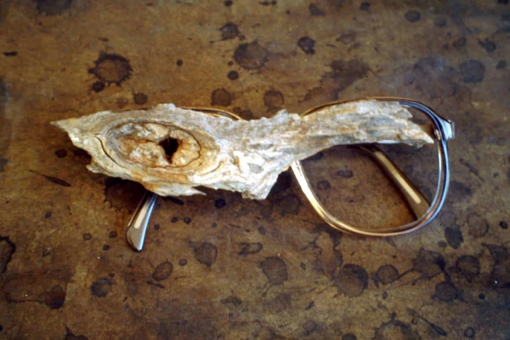 Nalda Searles, Another way of seeing, eyeglasses, aged mallee wood fragment found and collected from the West Australian Goldfields, 120mm x 60mm x 12mm