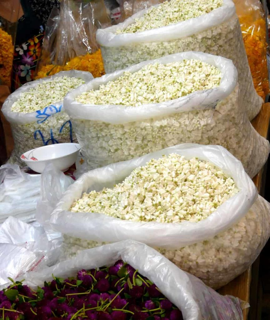 Bags of crown flowers being sold at Pak Khlong Talat (Flower Market). Bangkok, Thailand. 2014. Photo: Jess Dare.