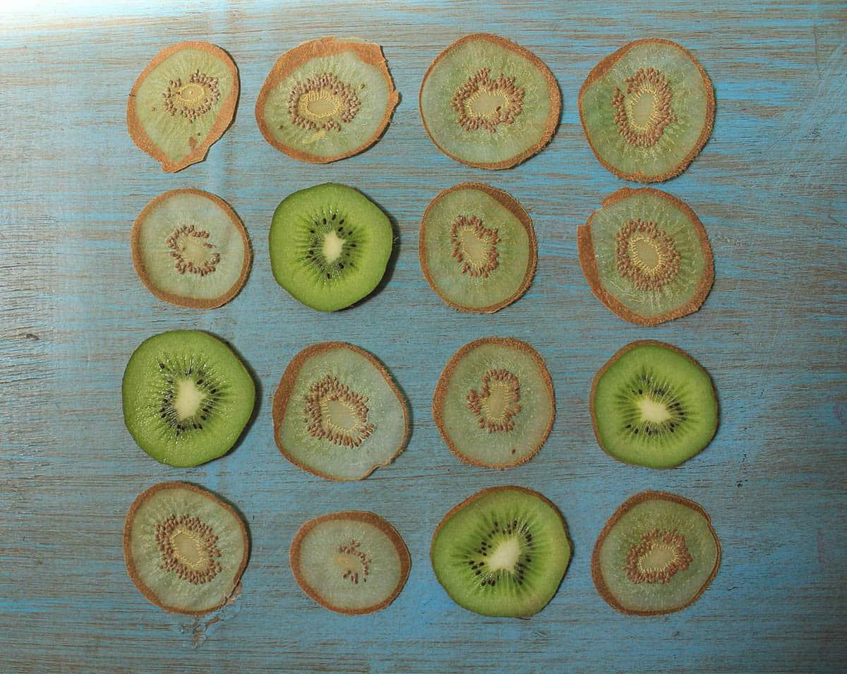 Vaidehi Hemant, Kiwi Lamp (Before), 2015, Sliced Kiwi Fruit, photo: Saloni Luktuke