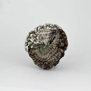Marisa Molin, Kelp Track Wandering (After), Sterling silver, Kelp, stainless steel brooch, 5 x 5.3 x 2.1cm, photo: Marisa Molin, made in King Island, Tasmania