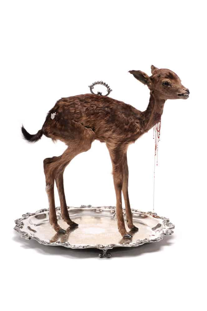 Julia deVille, Sentience (After), Stillborn deer, glass, rubies (18.45ct), pear cut garnet (0.76ct), 18ct white gold chain and wire, sterling silver, bronze, black rhodium, antique Wallace platter, 49 x 49 x 51cm, photo: Terence Bogue, made in Melbourne, Australia