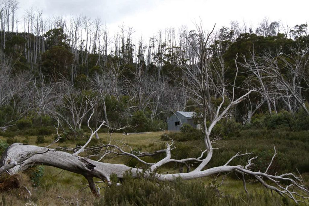 Patons Hut, Jagungal Wilderness, photo: Holly Grace