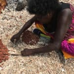 Marrnyula Mununggurr collects shells on the way to Dhaliwuy Bay