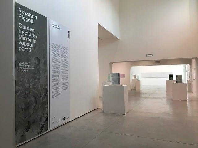 Rosslynd Piggott installation at Museo del Vetro, Venice.