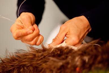 Kohai's hands weaving Te Hihi Kanapa cloak at Te Papa Tongarewa muka (flax fibre), feathers, photo:Norm Heke