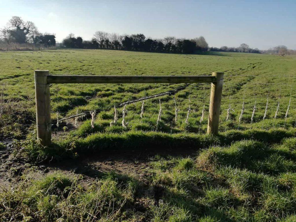 Lieta Marziali, Norfolk Fields..., location shot Stody, Norfolk, UK