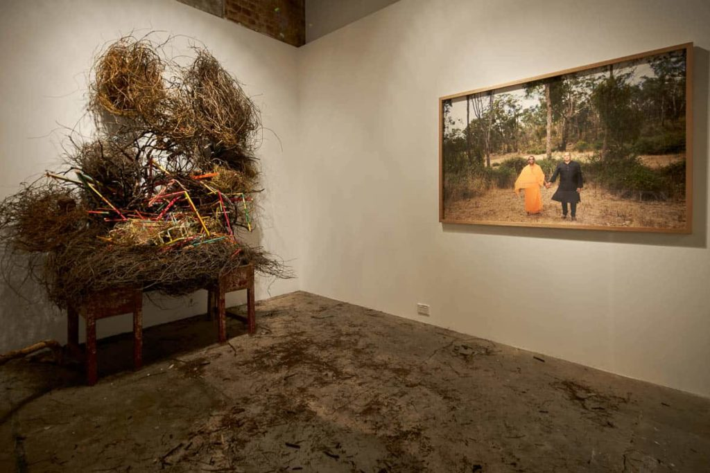 Rhett D'Costa, Becoming Differently, 2018, mixed media installation, dimensions variable. Individual works: Holding Hands, 2018, photograph, 100 x 140cm, An Indian spice table/dodder vine/mistletoe/haustorium/the dead hair of a cultural geographer/unidentified bird nests/a collapsing form, 2018, mixed media, dimensions variable, photo: Shane Hulbert